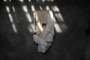 植月大輔展「veil」